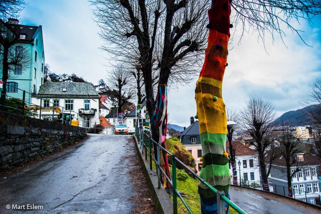 Stromy v barevných svetrech v Bergenu (Mart Eslem)