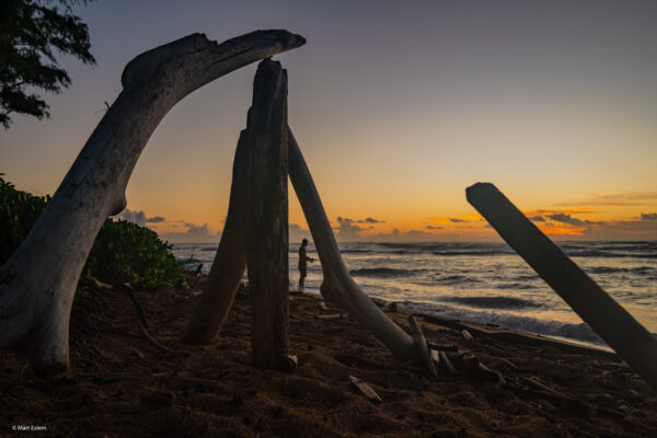 Havajské ostrovy Mart Eslem