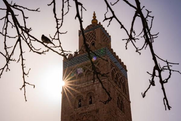 Eslem_Maroko_DSC02998