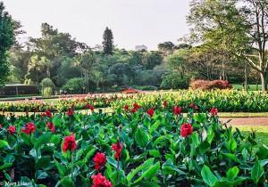 Botanická zahrada v Durbanu, JAR [Mart Eslem]