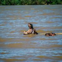 Ve vodě je lepší potkat krokodýla než hrocha, JAR [Mart Eslem]