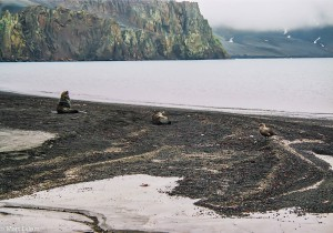 Ponuré pláže ostrova Deception(Mart Eslem)