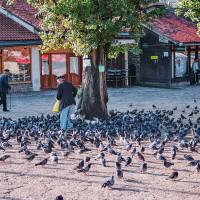 A ještě jedna vzpomínka na nádhernou tureckou čtvrť v Sarajevu (Mart Eslem)