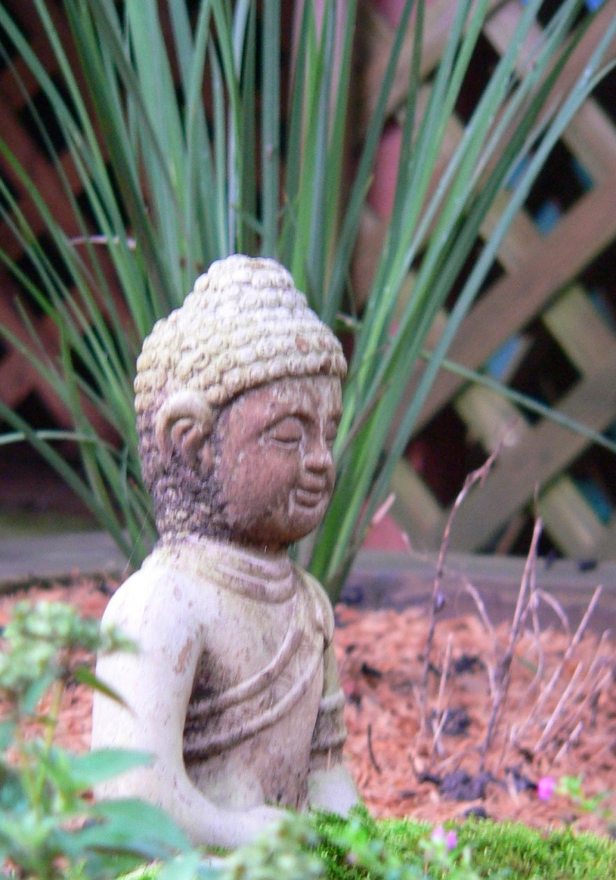 A peaceful garden assists a meditative state of mind.