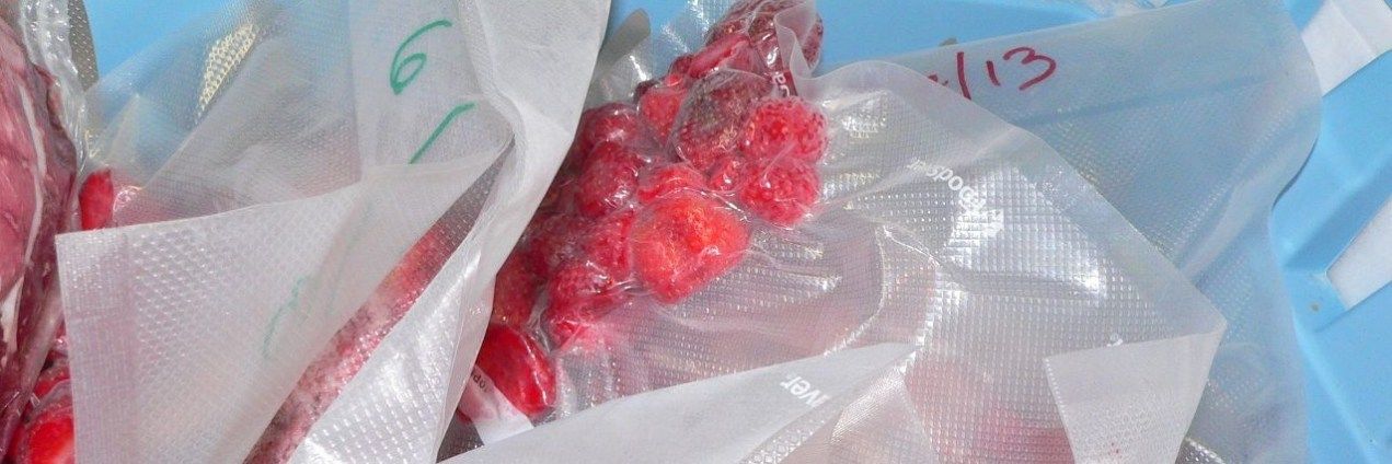 First I laid these strawberries on cookie trays on top in the chest freezer. Then I put them in vacuum sealed bags, so they didn't get squashed.