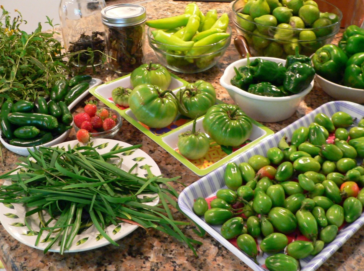 Fruits, vegetables and herbs on the kitchen counter.