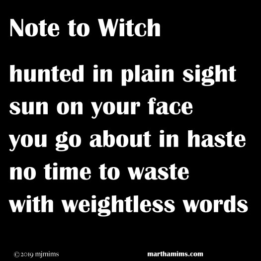 hunted in plain sight  sun on your face you go about in haste no time to waste  with weightless words