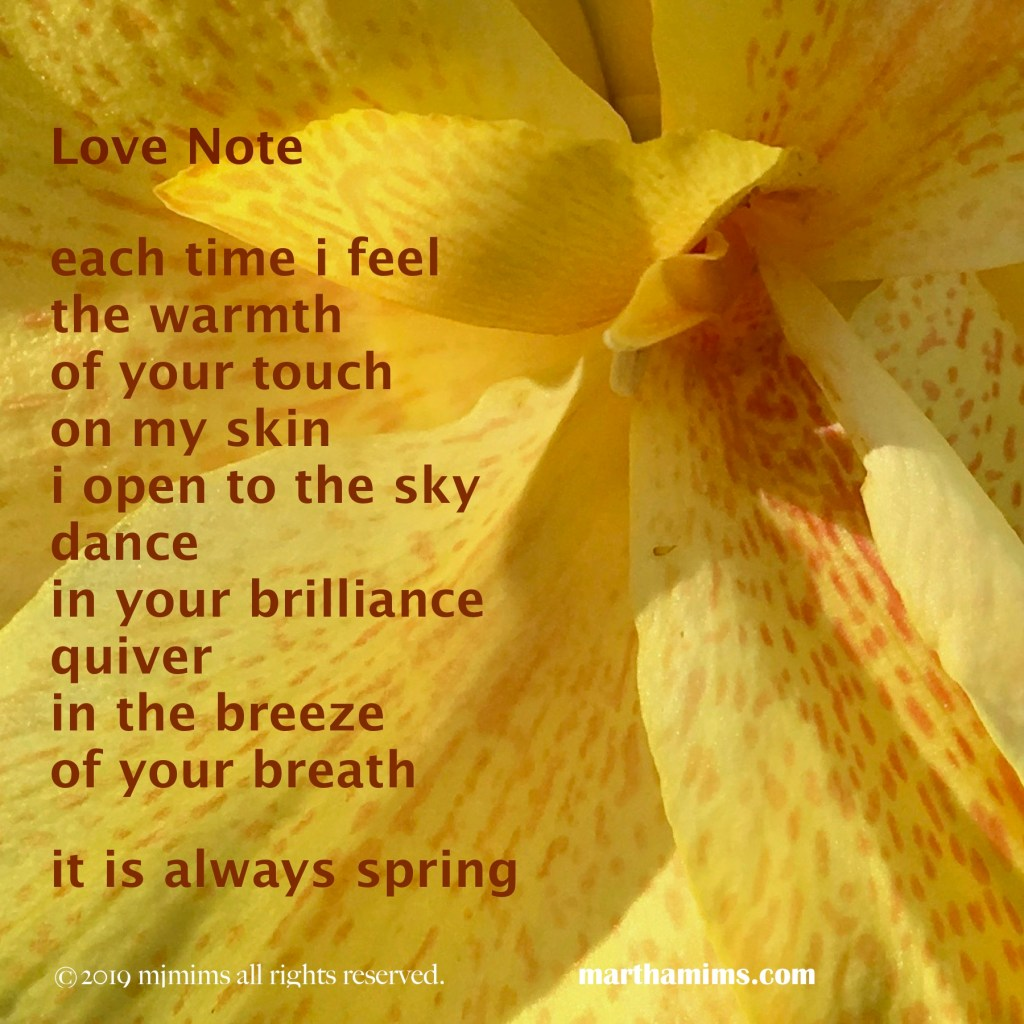 each time i feel the warmth of your touch  on my skin  i open to the sky dance in your brilliance quiver  in the breeze of your breath  it is always spring