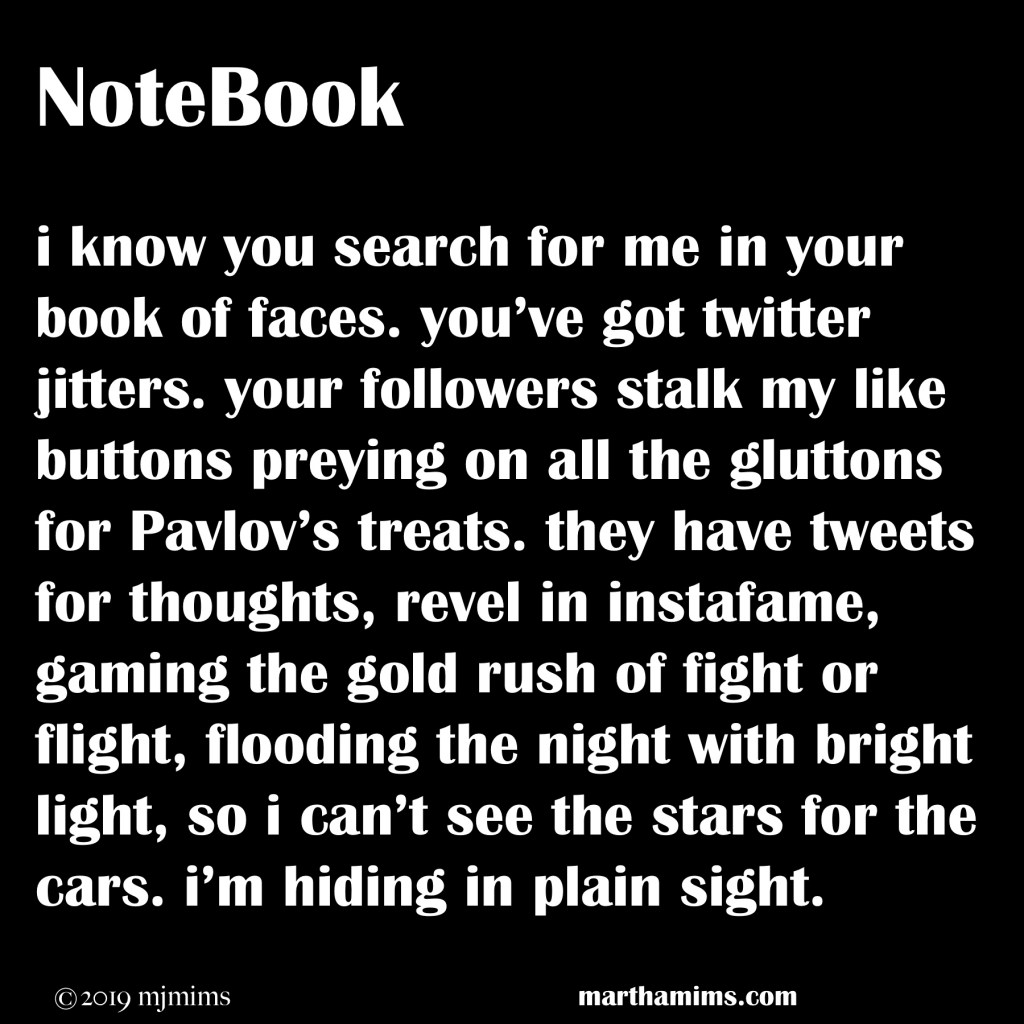i know you search for me in your book of faces. you've got twitter jitters. your followers stalk my like buttons preying on all the gluttons for Pavlov's treats. they have tweets for thoughts, revel in instafame, gaming the gold rush of fight or flight, flooding the night with bright light, so i can't see the stars for the cars. i'm hiding in plain sight.