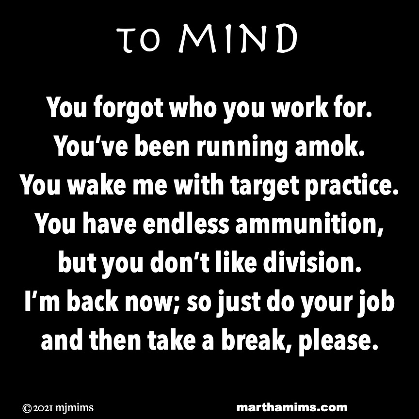 to mind  You forgot who you work for. You've been running amok. You wake me with target practice. You have endless ammunition, but you don't like division. I'm back now; so just do your job and then take a break, please.