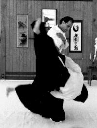 https://i2.wp.com/www.martial-way.com/images/aiki-jutsu.jpg
