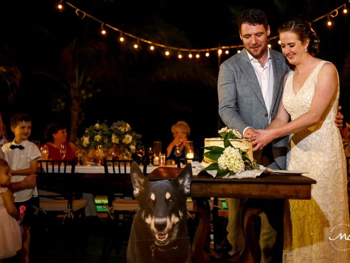 Bride and groom cake cutting with cut out image of their dog. Hacienda del Mar wedding by Martina Campolo Photography