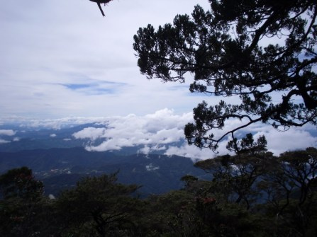 Beautiful views across Mt Kinabalu National Park