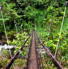 The suspension bridge on the Lavena Coastal Walk