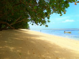 A pretty beach along the Lavena Coastal Walk, Taveuni, Fiji.