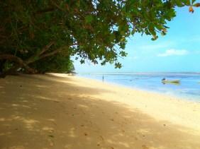 A pretty beach along the Lavena Coastal Walk, Taveuni, Fiji.
