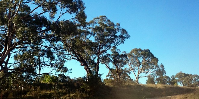 Travelling at Home – Motorbikes on the Monaro