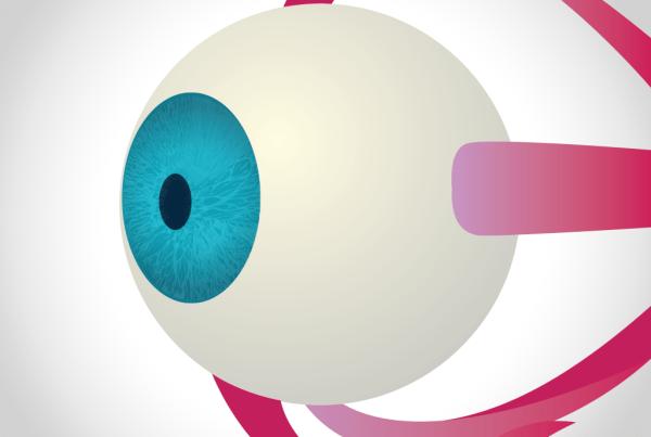 eyenatomy-app-olho-humano-3d