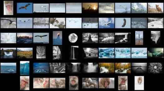 2014 Second Pass 58 photos