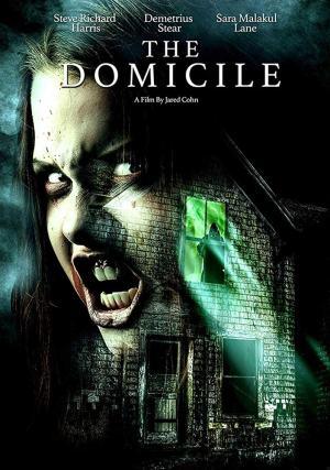The Domicile (2017)