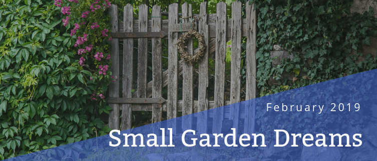 Small Garden Dreams - Blog post header - February 2019 - Martin's Home & Garden - Murfreesboro TN