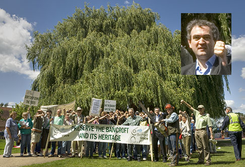 Saying no to felling historic trees in Stratford