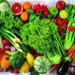 Ressourcesamling: Kost og ernæring.