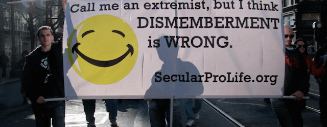 secular pro life banner