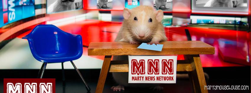 marty_MNN