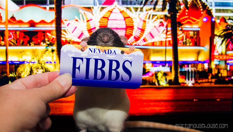 fibbs_NV