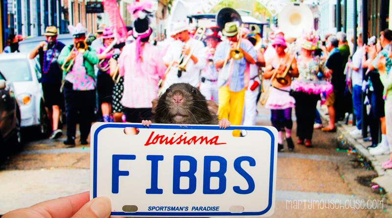 fibbs_LA