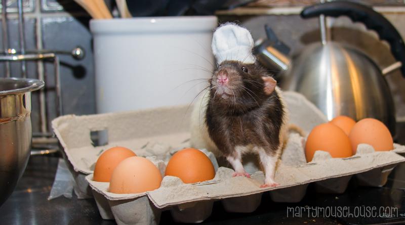 fibbs_eggs