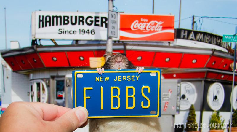 NJ_fibbs