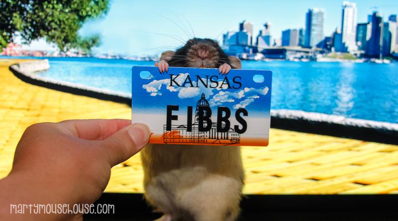 KS_fibbs