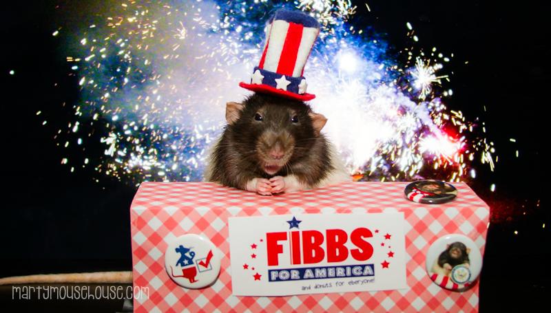 fibbs_july4