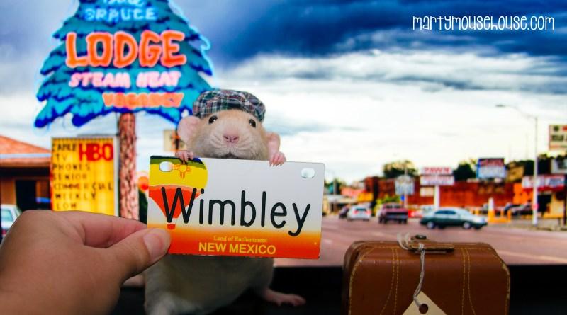 wimbley_newmexico2