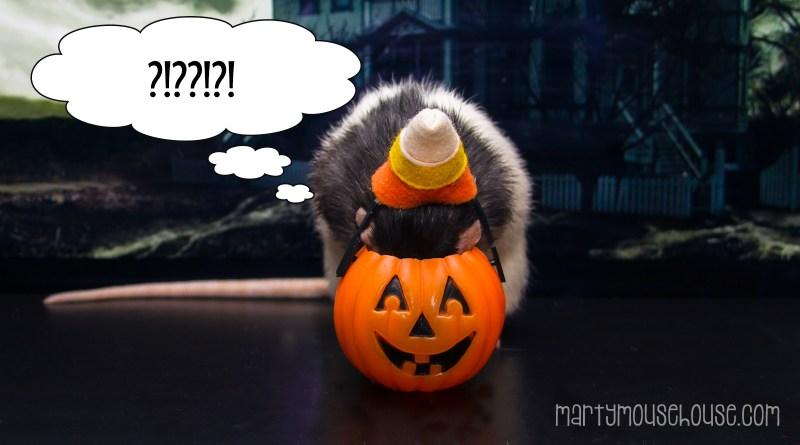fibbs_halloween
