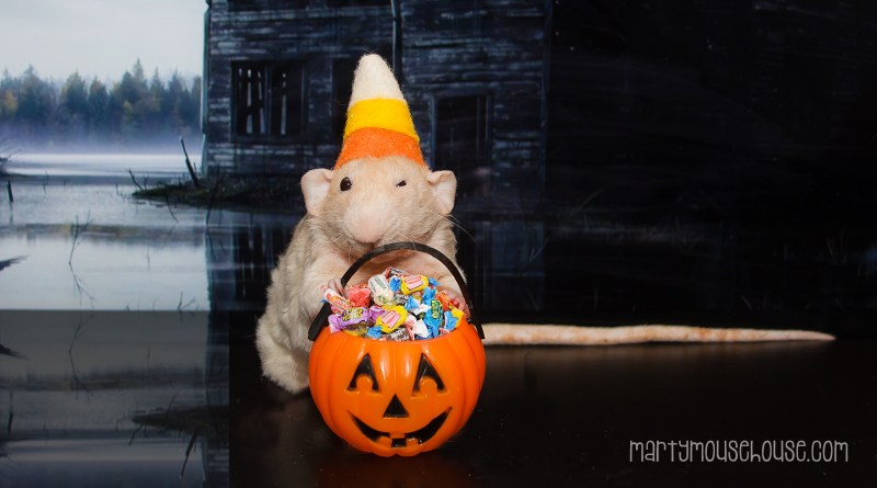 wimbley_halloween2