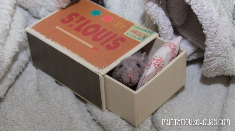 Matchbox Bed