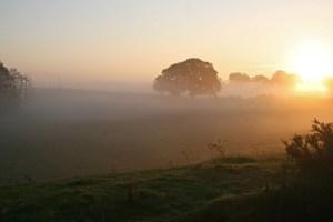 misty sunrise2