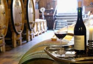 Эксурсии по винодельням Валенсии.