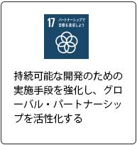 SDG's17
