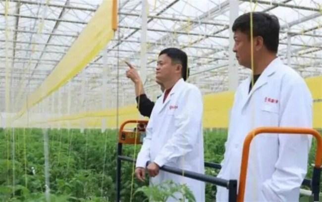 Jack Ma Image Weibo