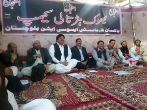 31st-day-of-pharmacists-association-hunger-strike-camp-in-quetta-1
