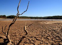عالمی خشک سالی اور منافعوں کی ہوس
