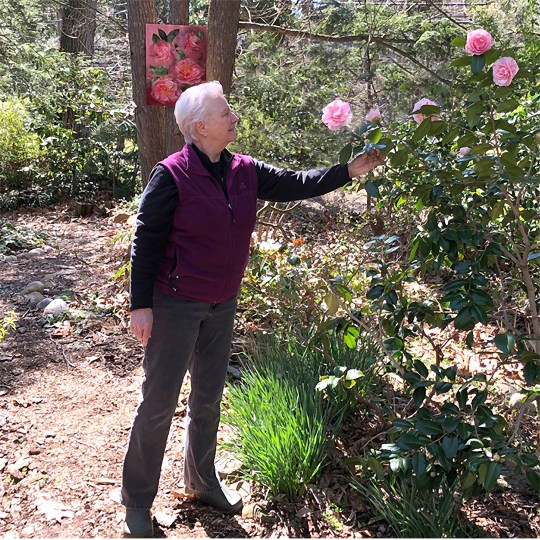 Mary Ahern in the Camellia Garden