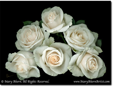 """Digital Painting, """"White Rose Pyramid"""" by Mary Ahern"""