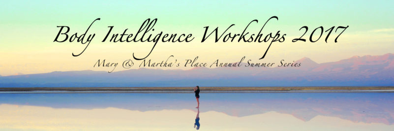 Body Intelligence Workshop 2017