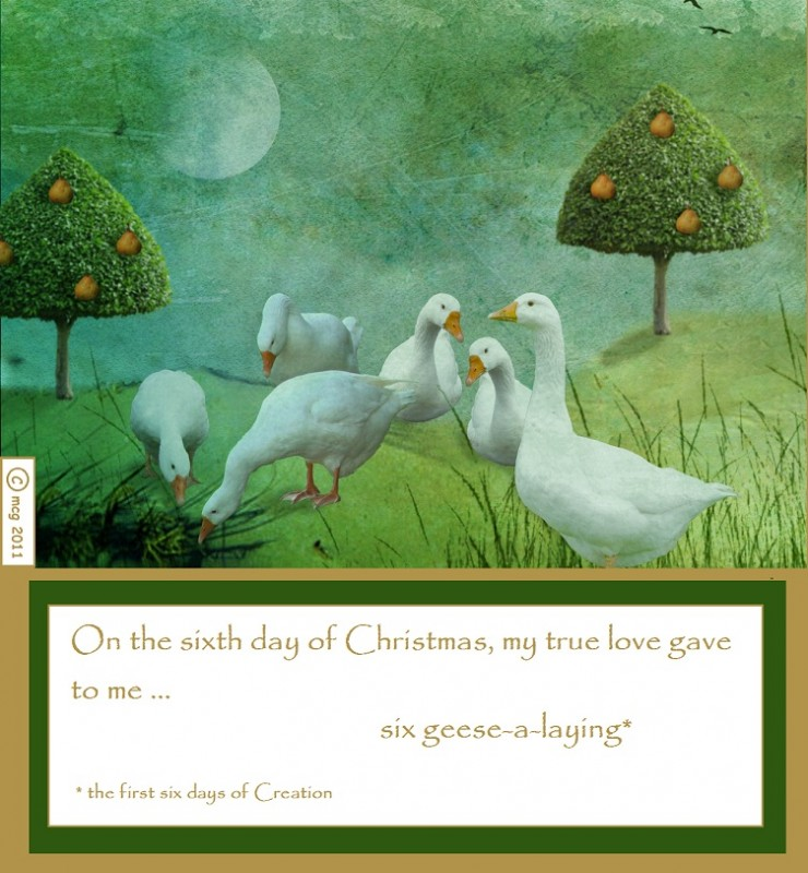 Twelve Days of Christmas: on the 6th day … : By Hand, With Heart
