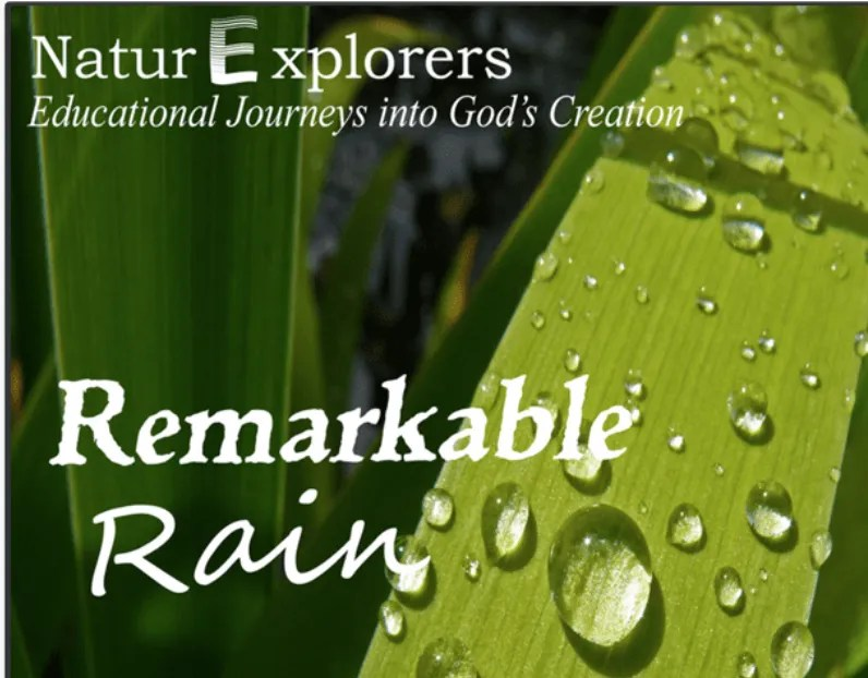 Have fun with a unit study about rain